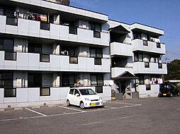 サファージュ高石[3階]の外観
