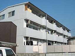 愛媛県松山市東石井1丁目の賃貸マンションの外観
