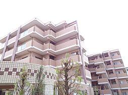 JR阪和線 信太山駅 徒歩8分の賃貸マンション
