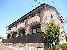 Comfort紘(コンフォート紘)[205号室号室]の外観