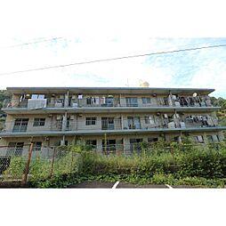 静岡県静岡市駿河区丸子芹が谷町の賃貸マンションの外観