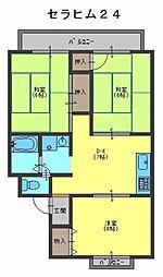 セラヒム24[2階]の間取り