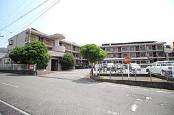千葉県柏市中原2丁目の賃貸マンションの外観