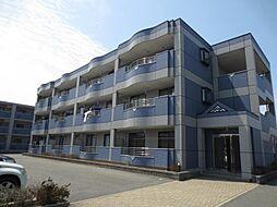 広島県東広島市西条町御薗宇の賃貸マンションの外観