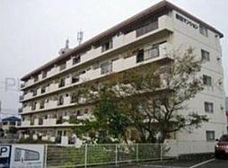 柴田マンション[5階]の外観