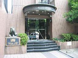 新栄町駅 3.7万円