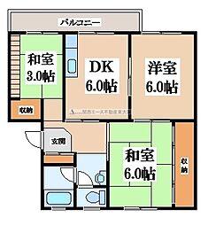 大阪府大東市諸福6丁目の賃貸マンションの間取り