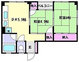 兵庫県神戸市東灘区御影郡家2丁目の賃貸マンションの間取り
