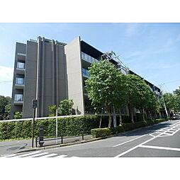 四ツ谷駅 47.0万円