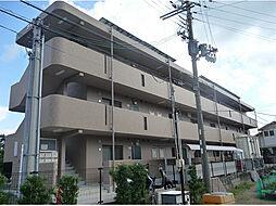 和歌山県和歌山市本脇の賃貸マンションの外観