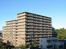 静岡県浜松市中区鴨江2丁目の賃貸マンションの外観