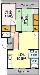 香川県高松市東山崎町の賃貸マンションの間取り