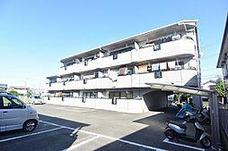 サングレイスミハマ[3階]の外観