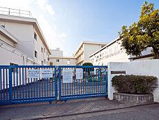中学校 900m 小平市立小平第一中学校