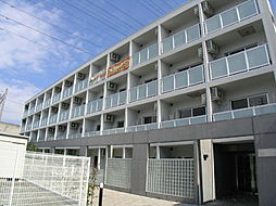 フィシオ橋本[309号室]の外観