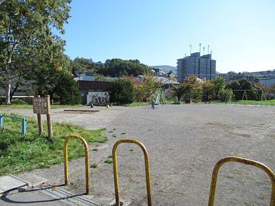 【公園】さくら...