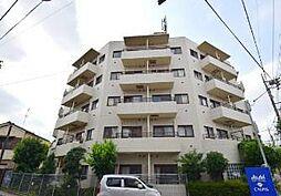 東京都葛飾区立石8丁目の賃貸マンションの外観