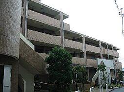 パークヒルズ中田[305号室]の外観