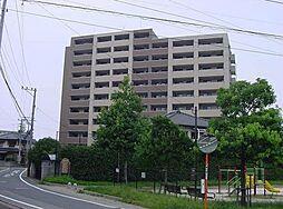 イーストフルハウス[9階]の外観