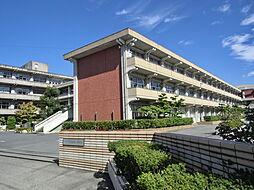 尾西第一中学校 徒歩 約18分(約1400m)