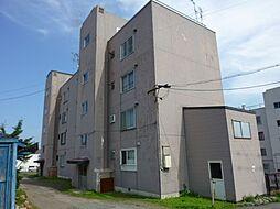 白菊マンション[3階]の外観