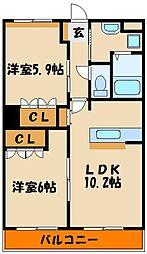 Fuji belle・maison[1階]の間取り