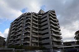 パレ武庫川プルミエール1[8階]の外観