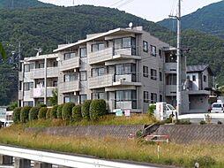 長野県上田市上田の賃貸マンションの外観