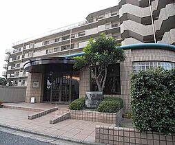 京都府京都市伏見区深草関屋敷町の賃貸マンションの外観