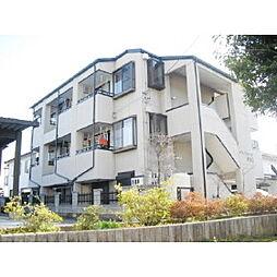 長野県松本市大字里山辺の賃貸マンションの外観