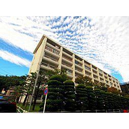 静岡県静岡市葵区春日2丁目の賃貸マンションの外観