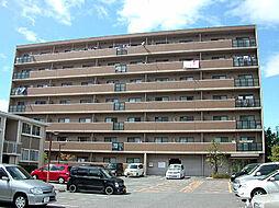 サンクレスト岸和田[505号室]の外観