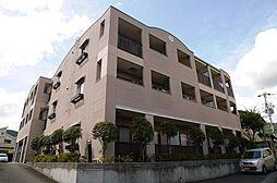 サンスタレ[3階]の外観