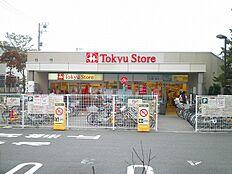 大岡山東急ストア(550m)