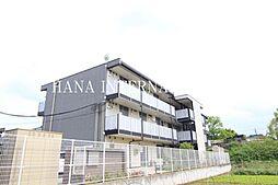 千葉県松戸市大谷口の賃貸マンションの外観