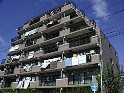 サンマンションチェリー[5階]の外観