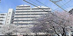 サンライト南浦和2番館[8階]の外観