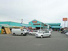 道の駅おさかなセンター(151m)