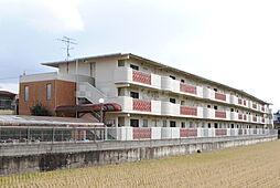 サンフラワー[1階]の外観
