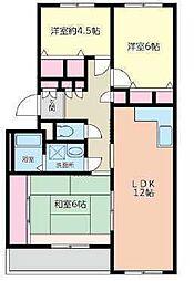 千葉県松戸市六高台5丁目の賃貸マンションの間取り
