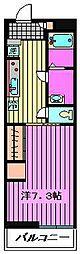 Cerulean[3階]の間取り