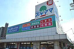 ドラッグスギヤマ石川橋店まで1375m