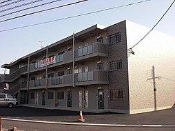 鹿児島県霧島市隼人町見次の賃貸マンションの外観
