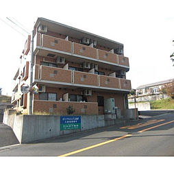神奈川県横浜市泉区新橋町の賃貸マンションの外観