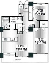 カデンツァザタワー[8F号室]の間取り