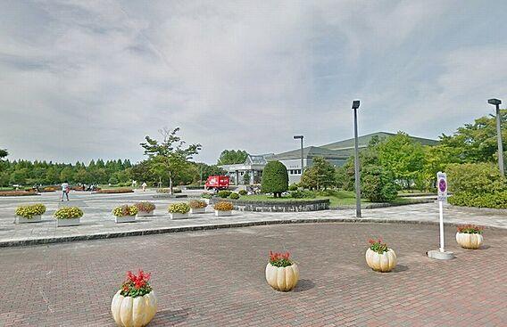 七北田公園 約...
