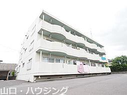 徳島県徳島市国府町府中の賃貸マンションの外観