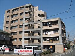 ヴィルヌーブ春日須玖[3階]の外観