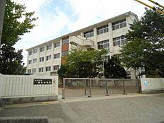 中学校第三中学校まで417m