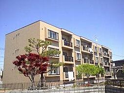 北海道札幌市北区篠路十条3丁目の賃貸マンションの外観